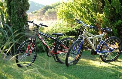 זוג אופני רכיבה צמודים בכל בקתה לטיול פיקניק בטבע
